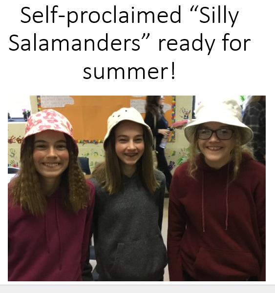 silly salamanders.PNG