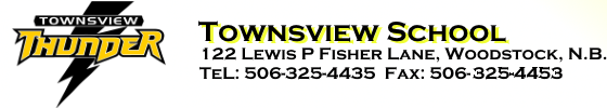 townsview Web Site